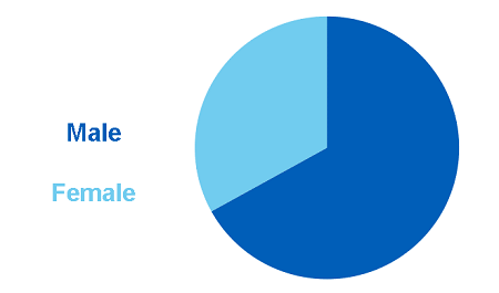 Pie chart showing the proportion of alcohol-specific deaths by sex