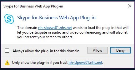 Image of Skype web app plug in