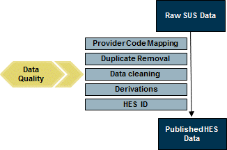 Graphic showing overview of the HES cleansing process