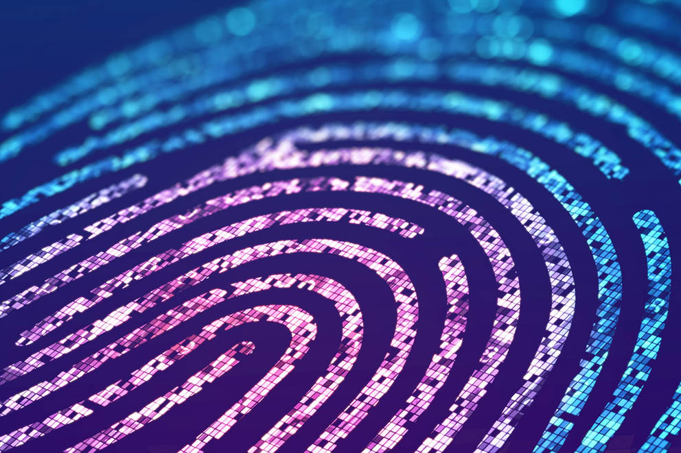 Stylised visual of a biometric fingerprint